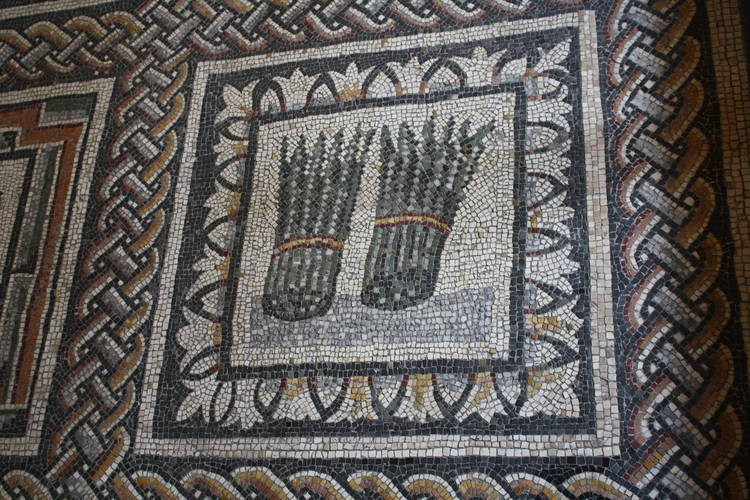 Roman art floor mosaic depicting asparagus
