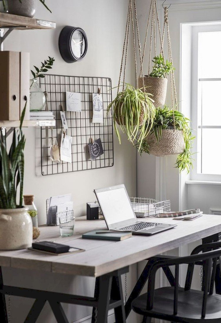 Gorgeous home office plants that make a lively space.