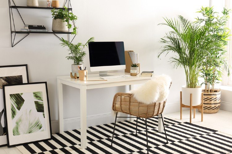 Lush greenery make a gorgeous office space.
