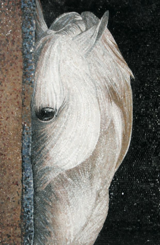 Stunning Horse Mural by Mosaics Lab