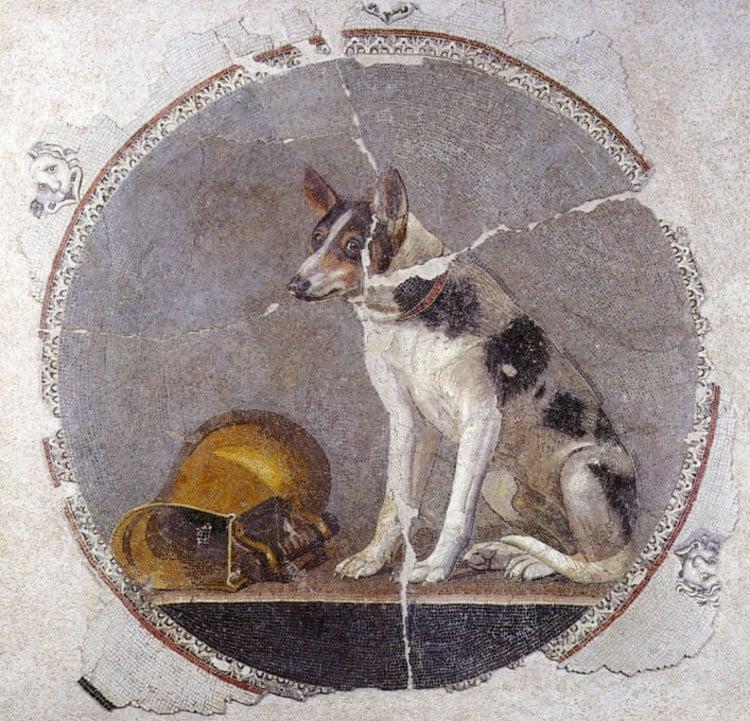 Egyptian Floor Mosaic Artwork and Designs