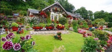Outdoor Mosaic Artwork and Garden Mosaics