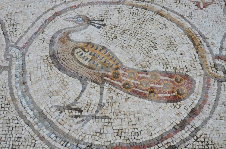 Bird Mosaic Designs, Bird Mosaic Artwork, Bird Mosaic Art