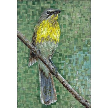 Yellow-breasted Bird