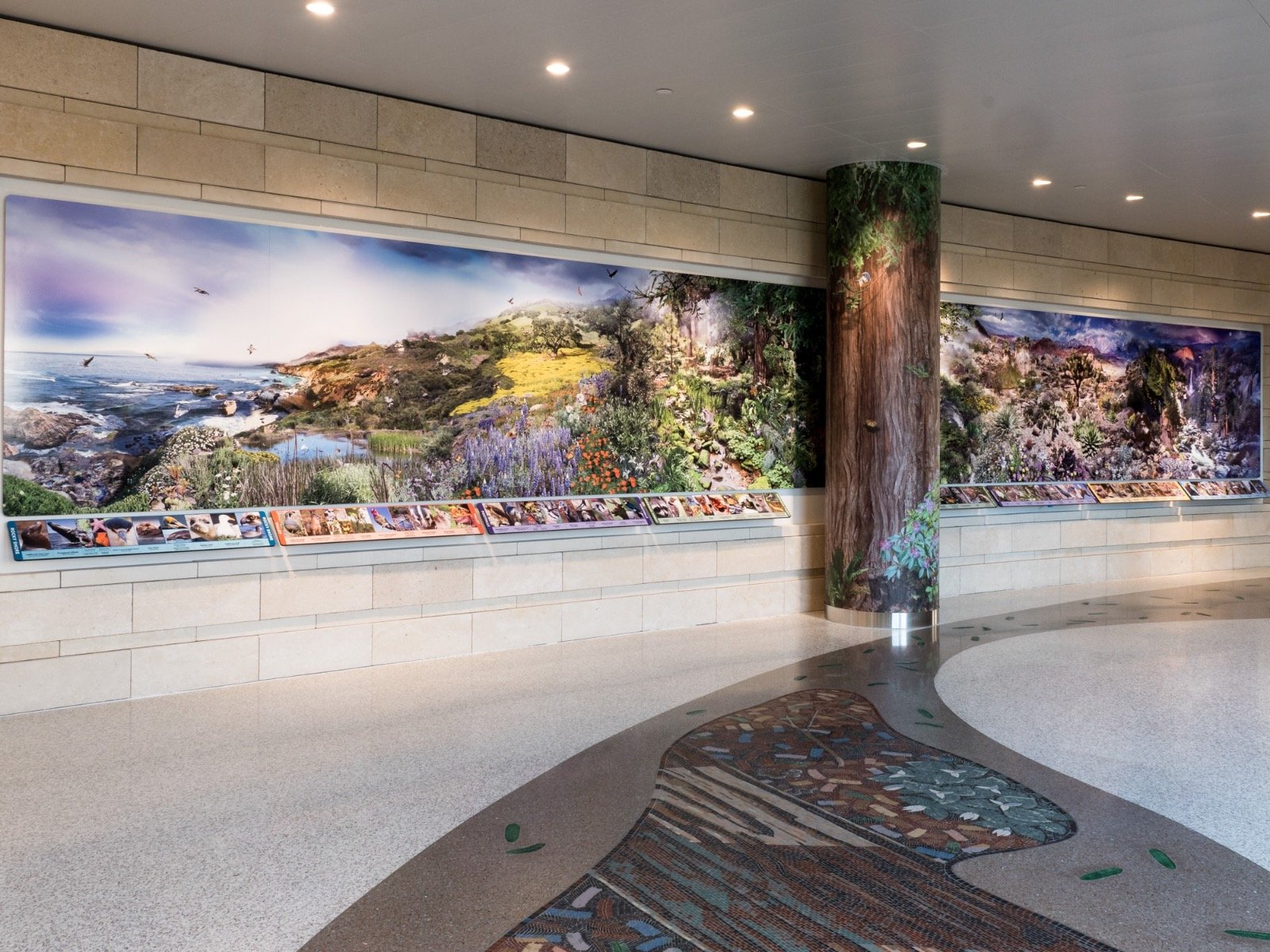 Lucile Packard Children's Hospital | custom made tile mosaic design provided by Mosaics Lab on mosaicslab.com